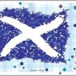 http://www.onemoregift.co.uk/product/scottish-saltire-scotland-flag-tartan-tea-towel